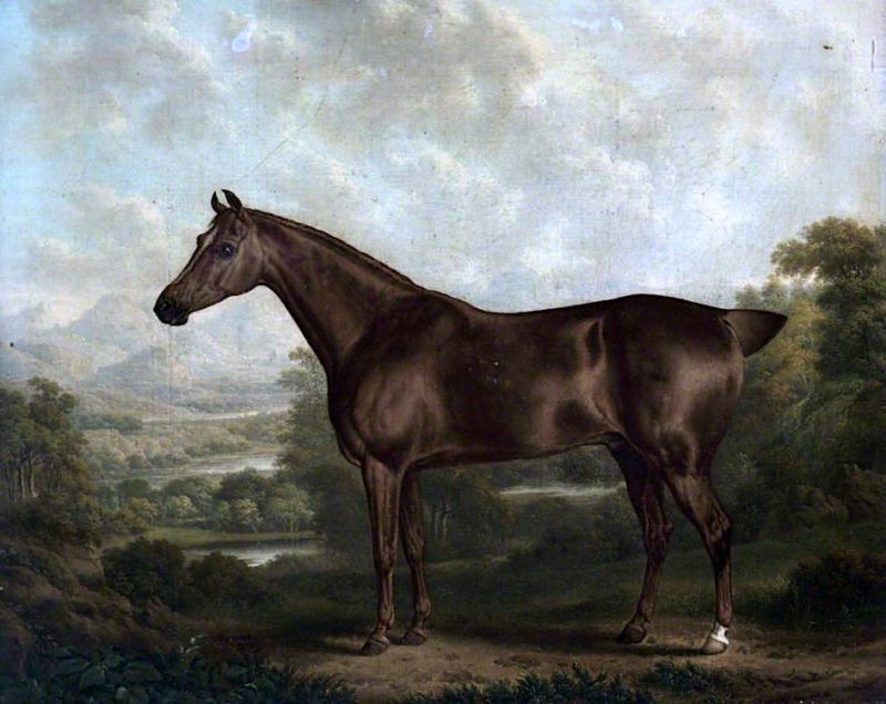 A Chestnut Horse in a Landscape | Charles Towne | oil painting