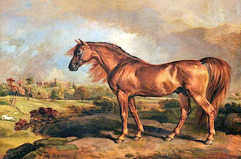 A Chestnut Stallion in the Grounds of Powis Castle | James Ward | oil painting