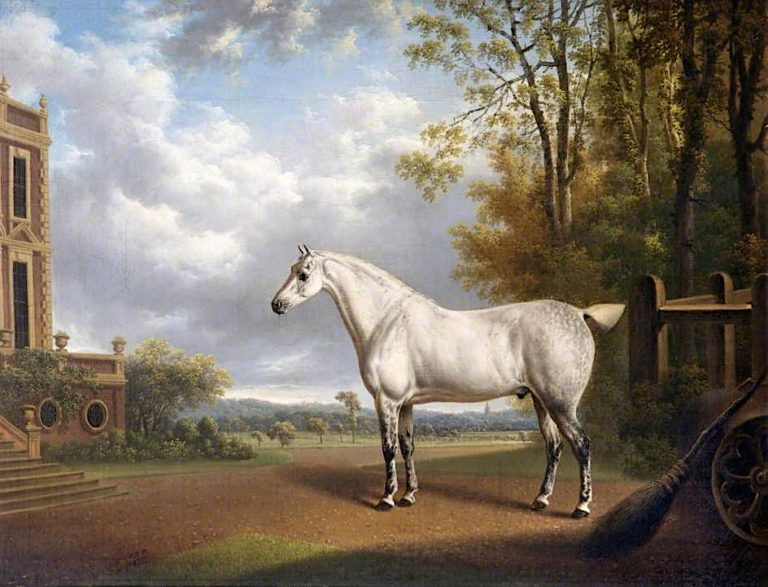 A Grey Cob at Croxteth | Charles Towne | oil painting
