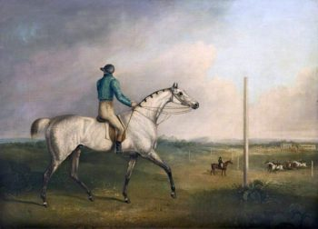A Grey Racehorse with a Jockey Up on a Racecourse | Charles Towne | oil painting