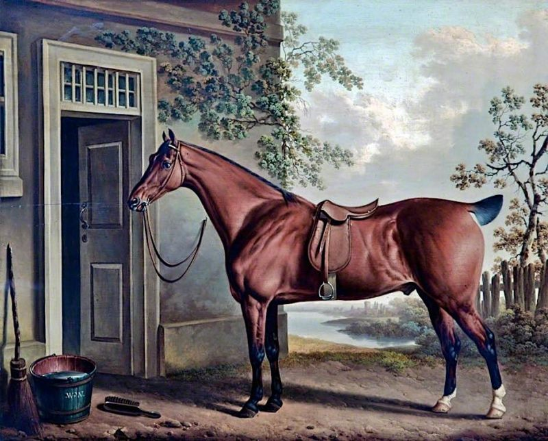 A Saddled Bay Hunter Tethered Outside a Stable | Charles Towne | oil painting