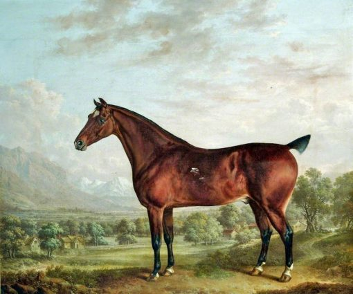 Bay Horse in a Landscape with Farm Buildings | Charles Towne | oil painting