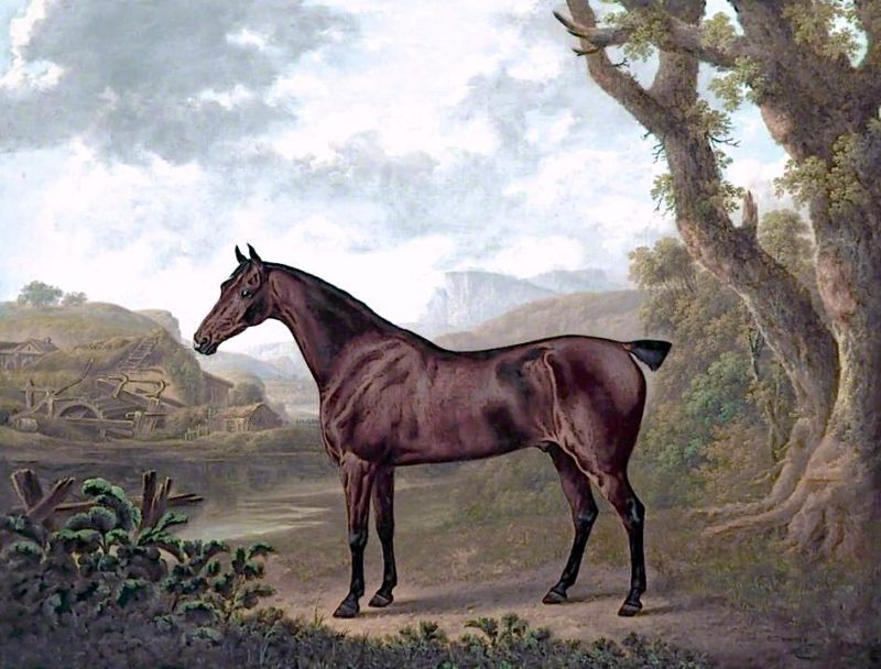 Bay Horse in a Mountain Landscape | Charles Towne | oil painting