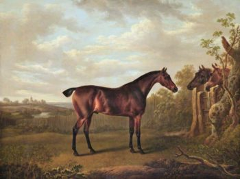 Bay Hunter in a Field with Two Horses Looking over a Fence | Charles Towne | oil painting