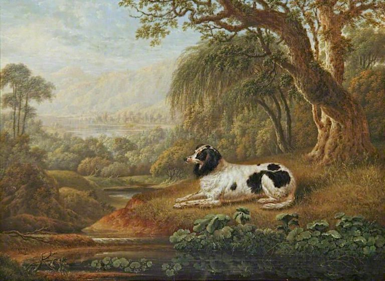 Black and White Spaniel in a Landscape | Charles Towne | oil painting