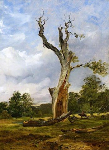The Blasted Tree | Horatio McCulloch | oil painting