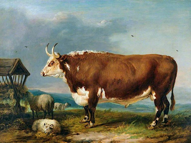 Hereford Bull with Sheep by a Haystack | James Ward | oil painting