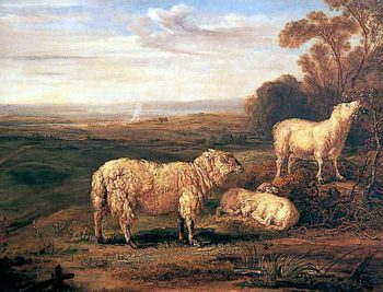 Sheep on the Downs | James Ward | oil painting