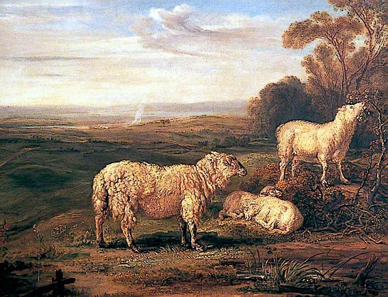 Sheep on the Downs   James Ward   oil painting