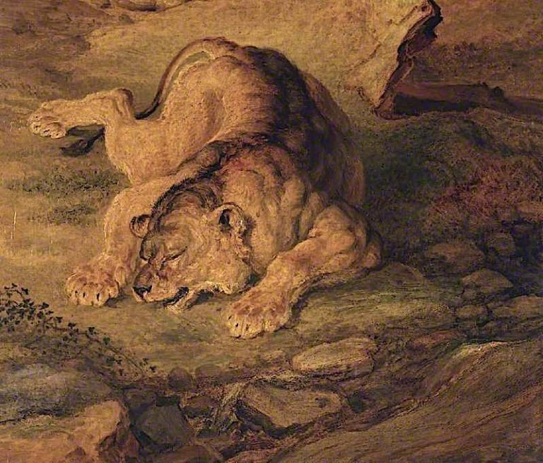 Sleeping Lioness | James Ward | oil painting