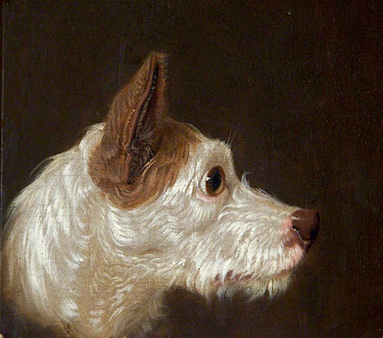 Dogs Head | James Ward | oil painting