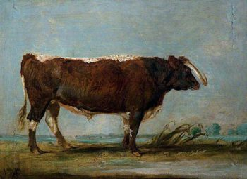 Leicestershire Longhorn Bull | James Ward | oil painting