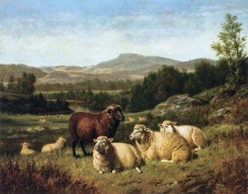 Sheep Resting in Rocky Landscape | Arthur Fitzwilliam Tait | oil painting