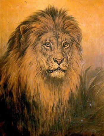 Lions Head | Robert Morley | oil painting