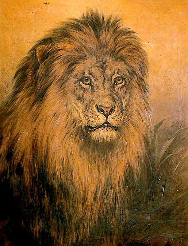 Lions Head   Robert Morley   oil painting