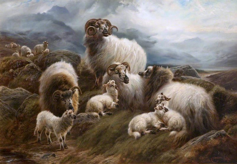 Sheep in a Landscape | Robert Watson | oil painting