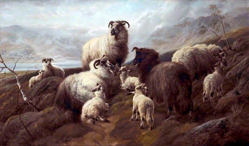 Sheep and Lambs   Robert Watson   oil painting