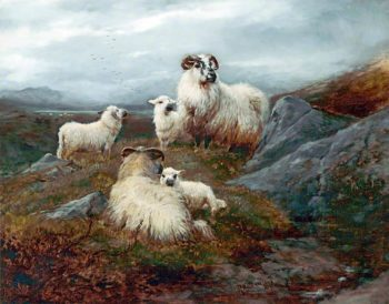 Five Sheep in a Landscape | Robert Watson | oil painting