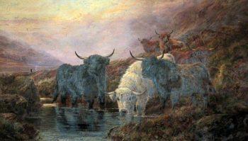 Highland Cattle | Robert Watson | oil painting