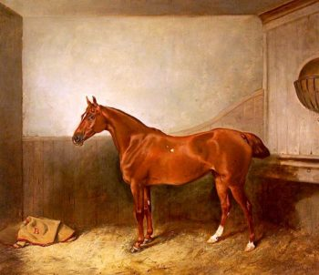 A Chestnut Hunter with a White Blaze in His Stable | John Alfred Wheeler | oil painting