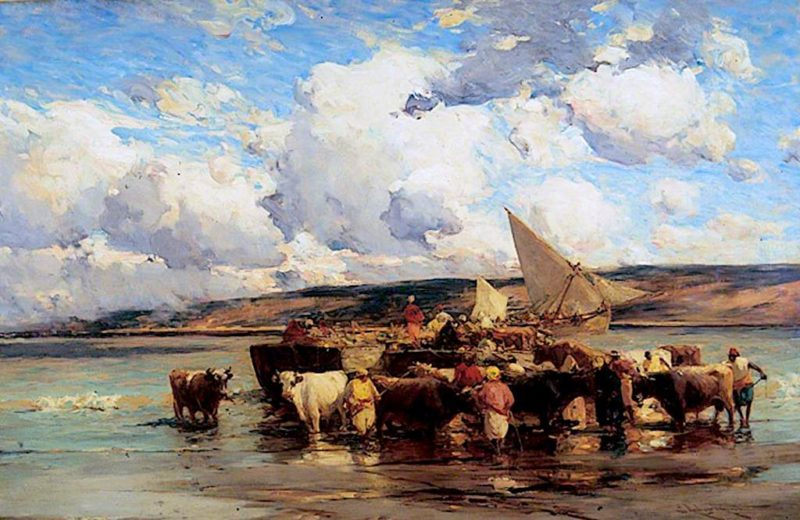 Embarking Cattle