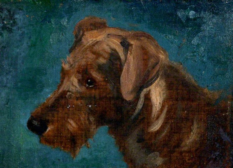 Head of a Dog   Charles Hodge Mackie   oil painting