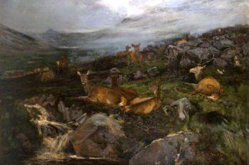 Deer Resting | John Sydney Steel | oil painting
