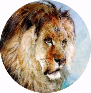 A Lions Head | William Huggins | oil painting