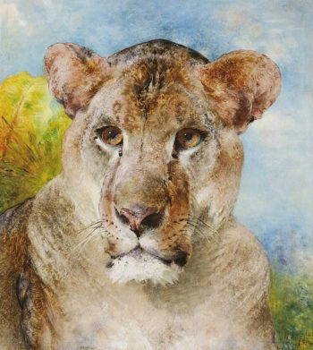 Head of a Lioness | William Huggins | oil painting