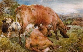Three Cows in a Field | William Huggins | oil painting