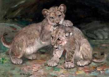 Lion Cubs | William Walls | oil painting