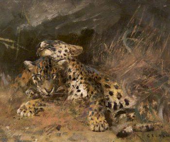 Leopard Cubs | Cuthbert Edmund Swan | oil painting