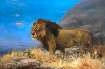 Study of a Lion   Cuthbert Edmund Swan   oil painting