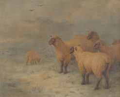 Sheep on Moorland | Henry Charles Bryant | Oil Painting