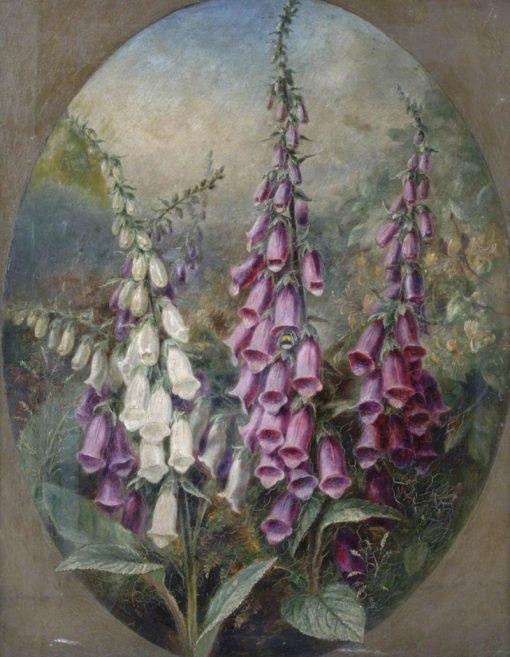 Foxgloves | Albert Durer Lucas | Oil Painting