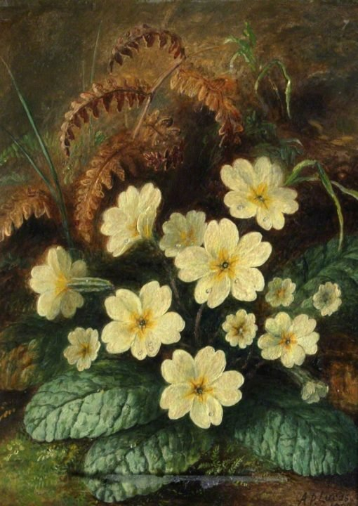 Primroses | Albert Durer Lucas | Oil Painting