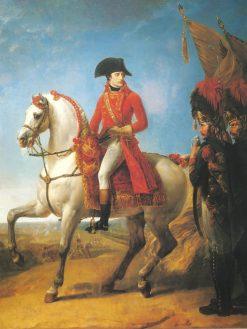 Bonaparte recompense les grenadiers de la garde consulaire après la bataille de Marengo | Antoine-Jean Gros | Oil Painting