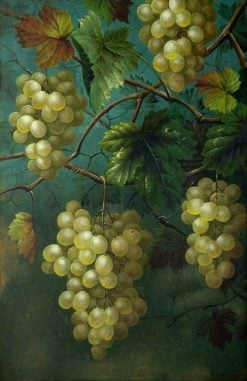Still Life of Grapes and Vine | Edwin Steele | Oil Painting