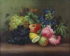 Still-life of grapes with vines