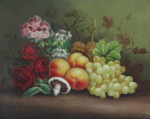 Still life of grapes with vines