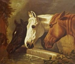 Three Horses at a Drinking Trough | John Frederick Herring