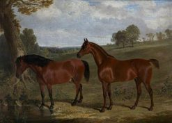 A Bay Horse and a Pony in a Landscape | John Frederick Herring