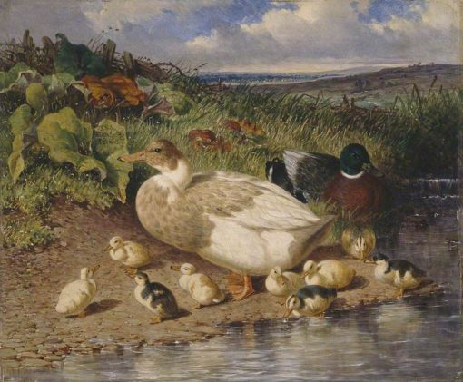 Ducks by a Stream | John Frederick Herring