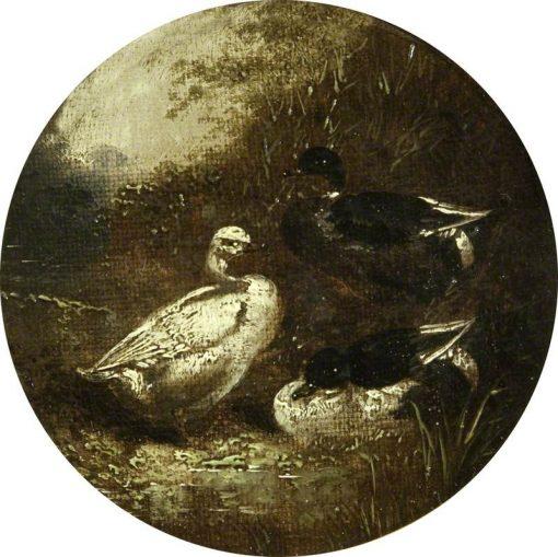 Ducks | John Frederick Herring
