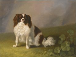 King Charles Spaniel in a Landscape | Jakob Philipp Hackert | Oil Painting