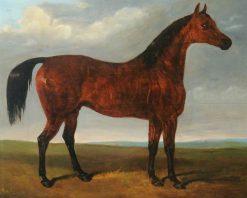 Horse | John Frederick Herring