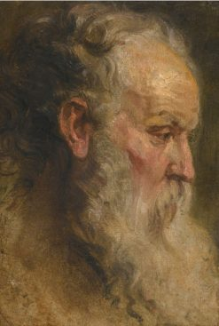 Head of a Bearded Man | Anthony van Dyck | Oil Painting