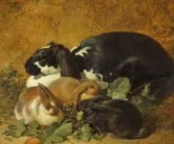 Rabbits | John Frederick Herring