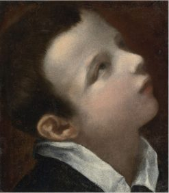 Head of a Youth | Annibale Carracci | Oil Painting