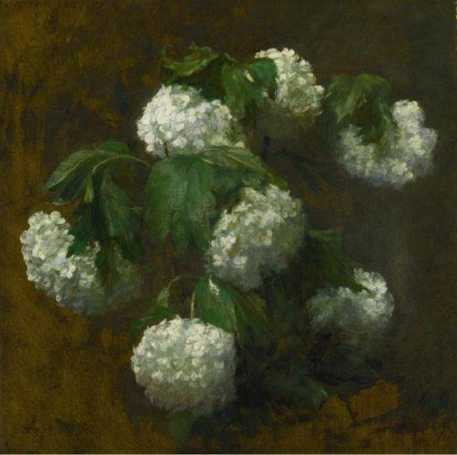 White Hydrangeas | Victoria Fantin-Latour | Oil Painting
